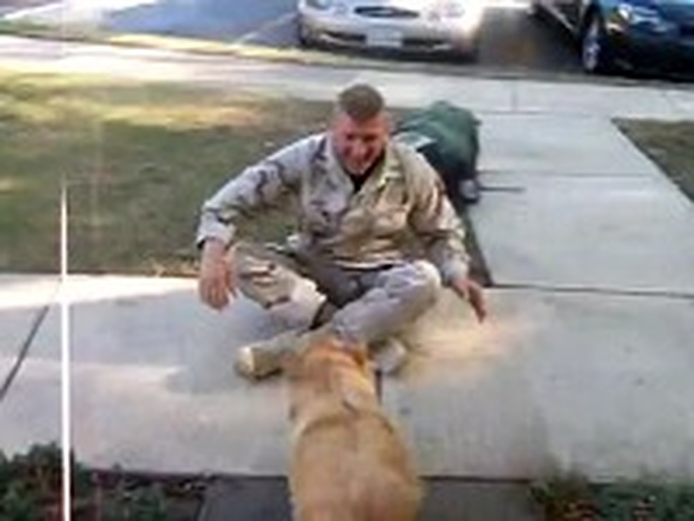 Soldier Reunites with his Dog After a Year