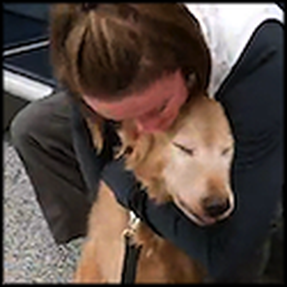 Mommy and Doggy Reunite After a Year Apart