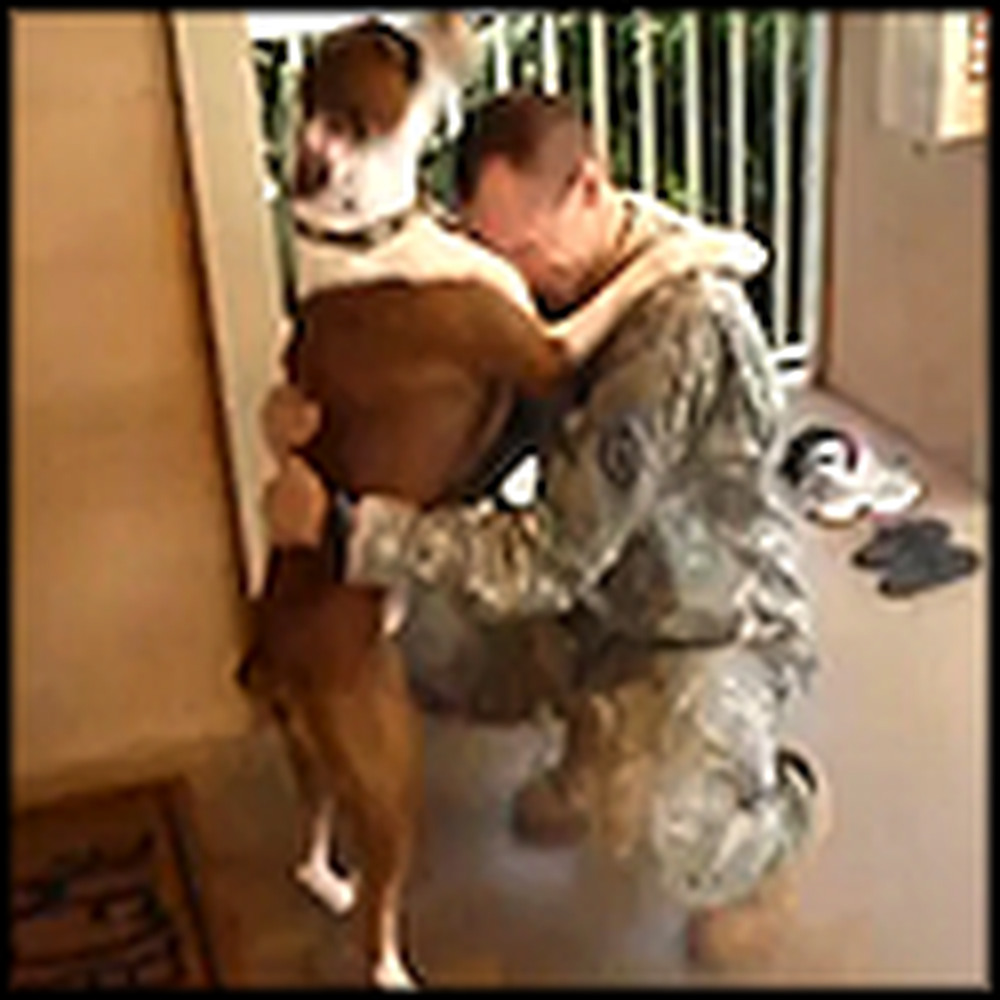 Dog Welcomes his Soldier Daddy Home with a Big Hug