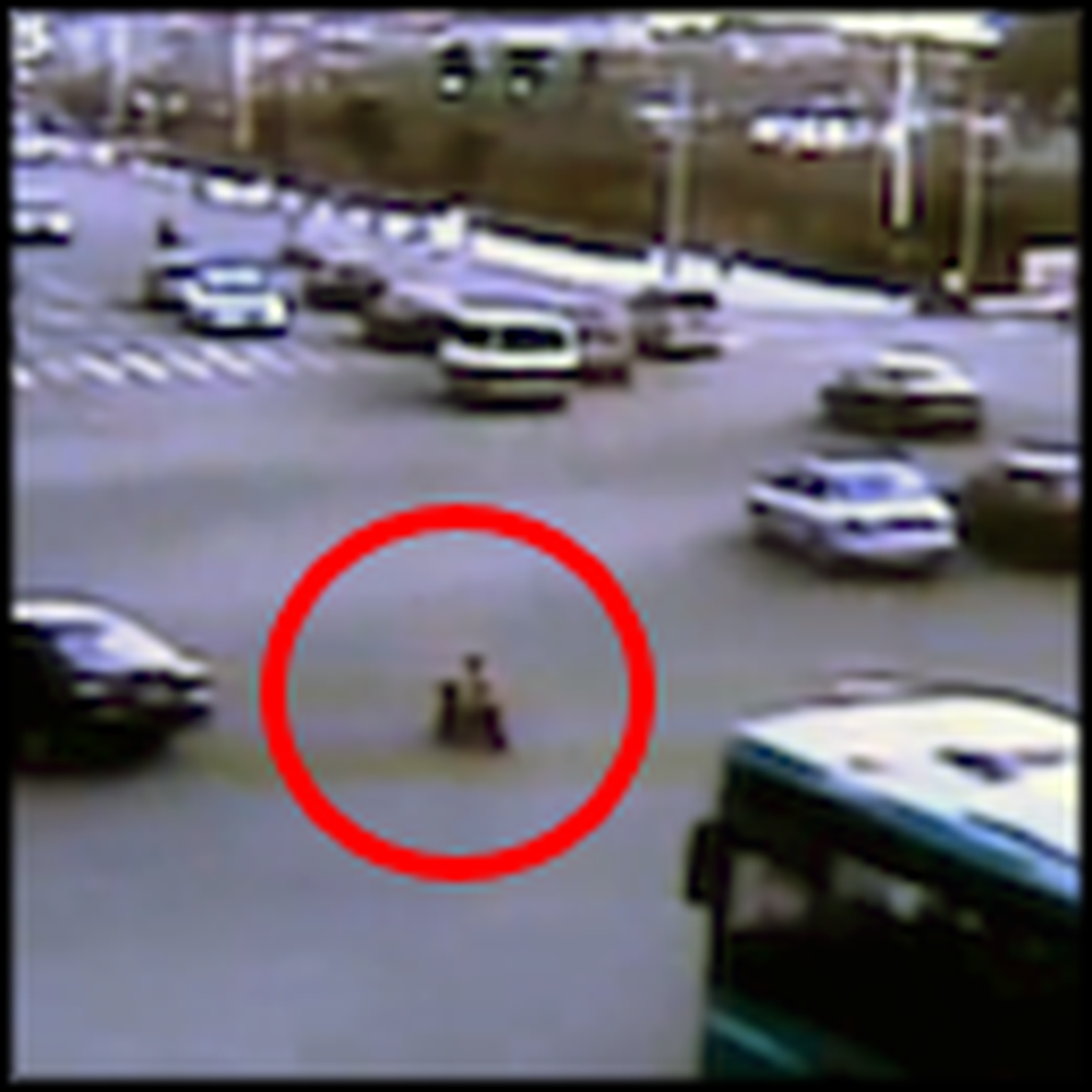 3 Year Old on a Scooter in Busy Traffic is Miraculously Saved