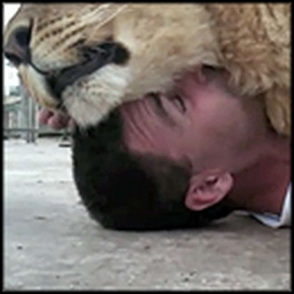 Man Adorably Cuddles with a Lovable Lion
