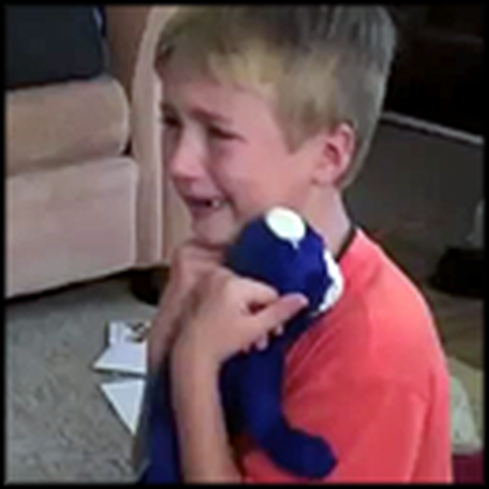 Little Boy Loses his Favorite Stuffed Animal - And Finds it Years Later