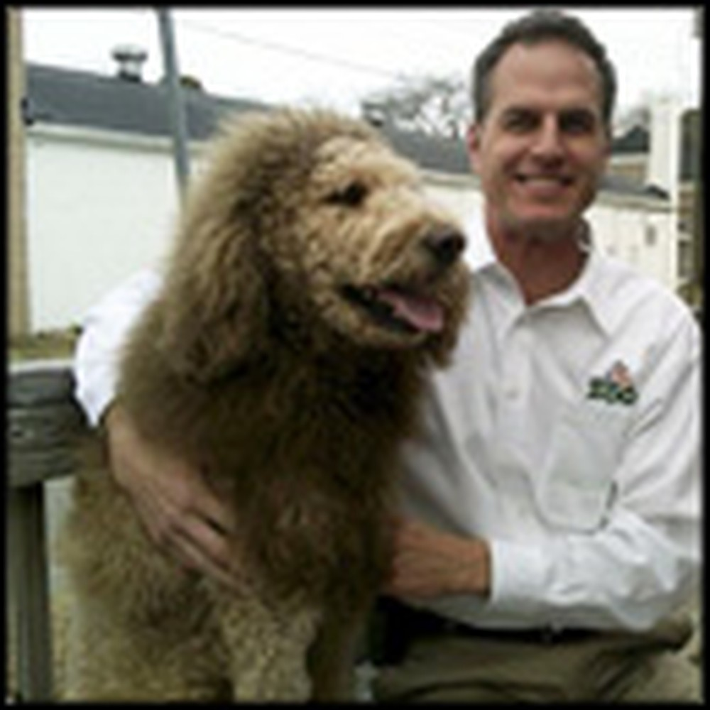 The World's First Lion Dog