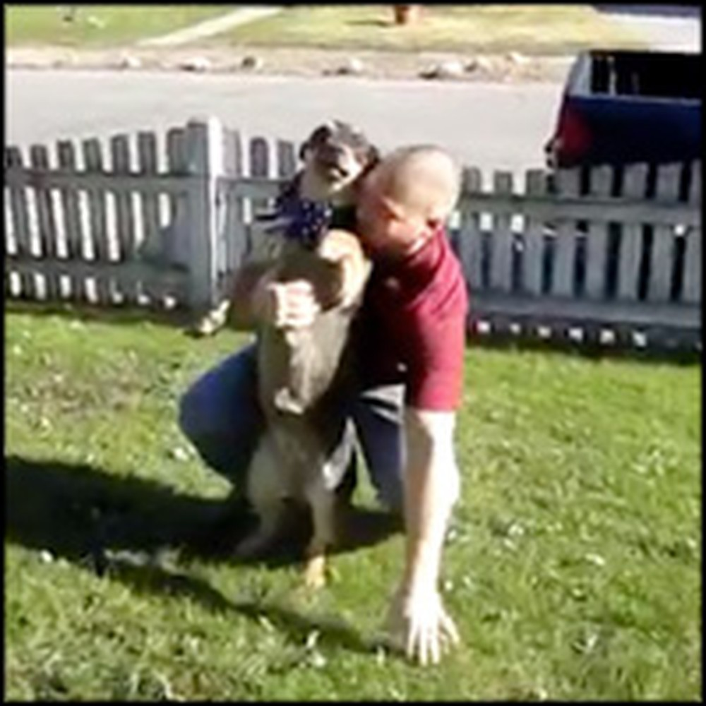 Dog Can't Contain Excitement When Soldier Returns Home