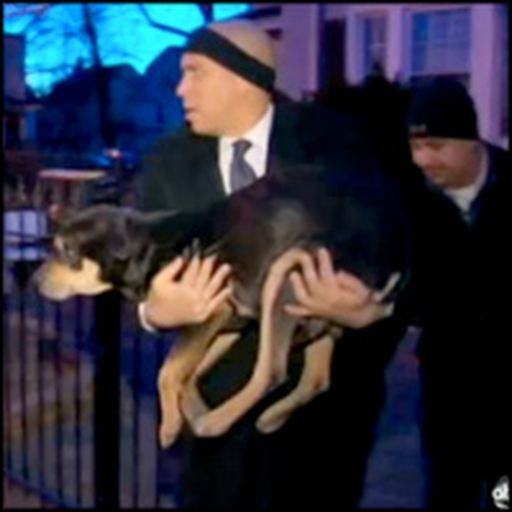Mayor of Newark Rescues a Dog Freezing in the Cold