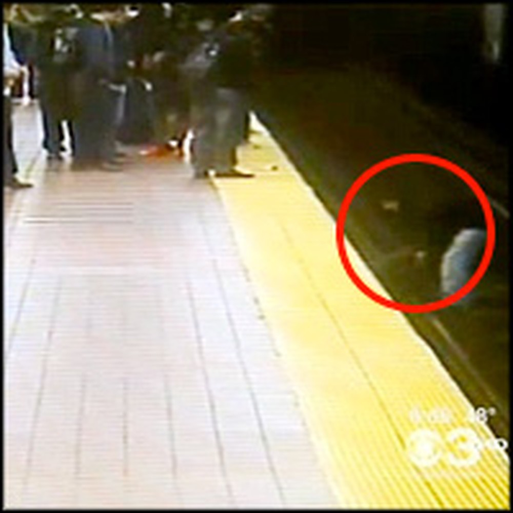 Stranger Saves a 63 Year-Old Man From Death
