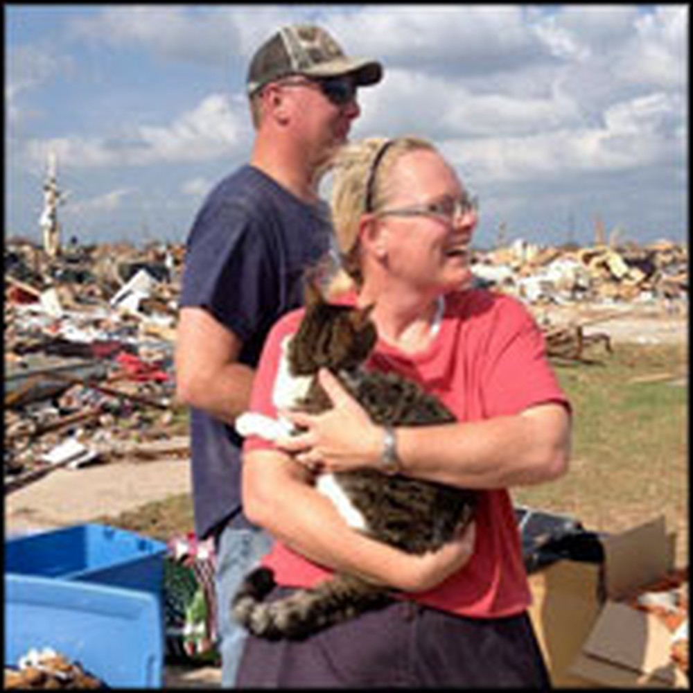 Cat Buried in Tornado Rubble for 6 Days is Rescued by Boy Scout