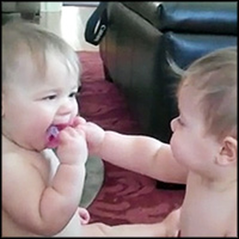 Adorable Twins Have a Pacifier War - So Darling