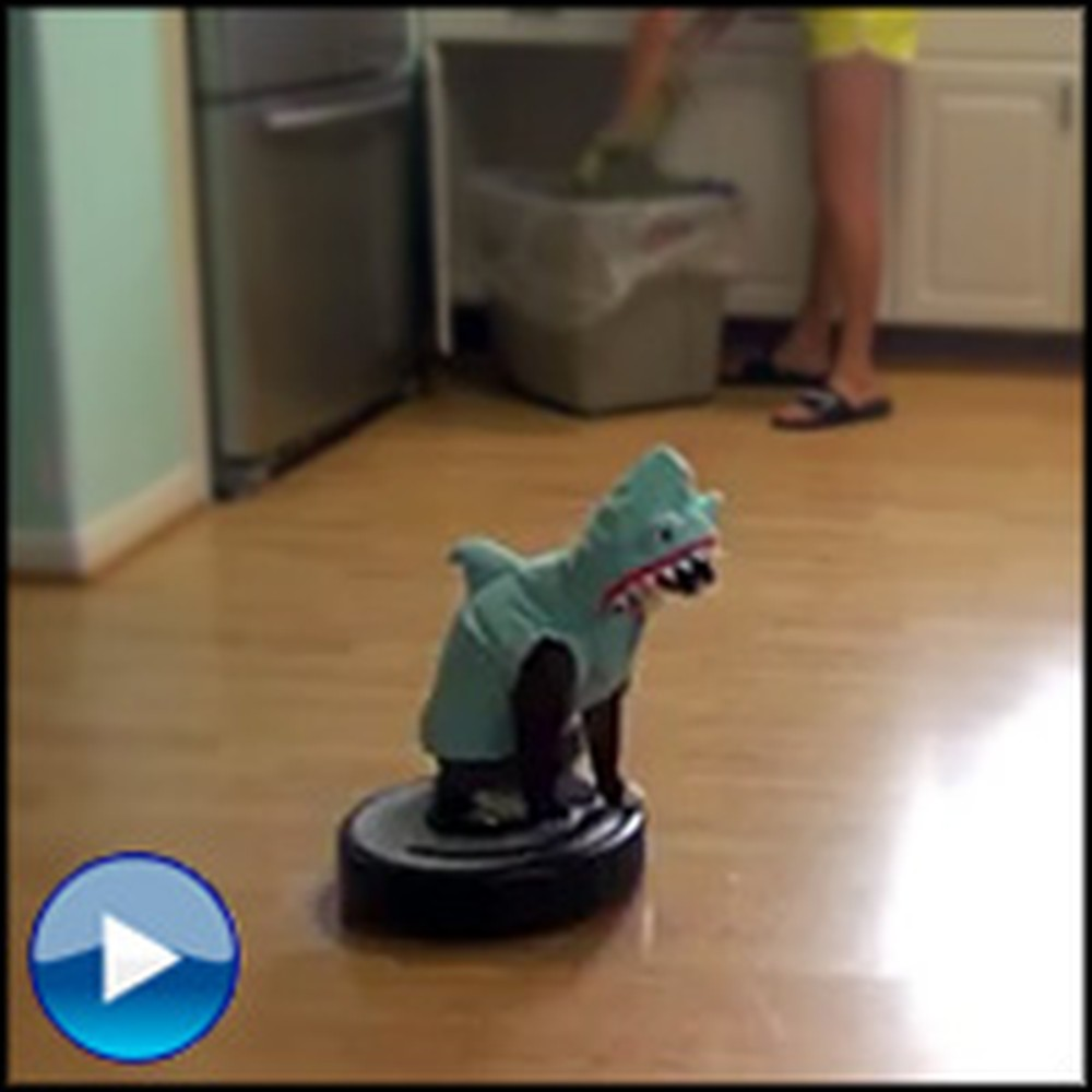 Hilarious Cat Dressed as a Shark Rides a Roomba - Too Funny