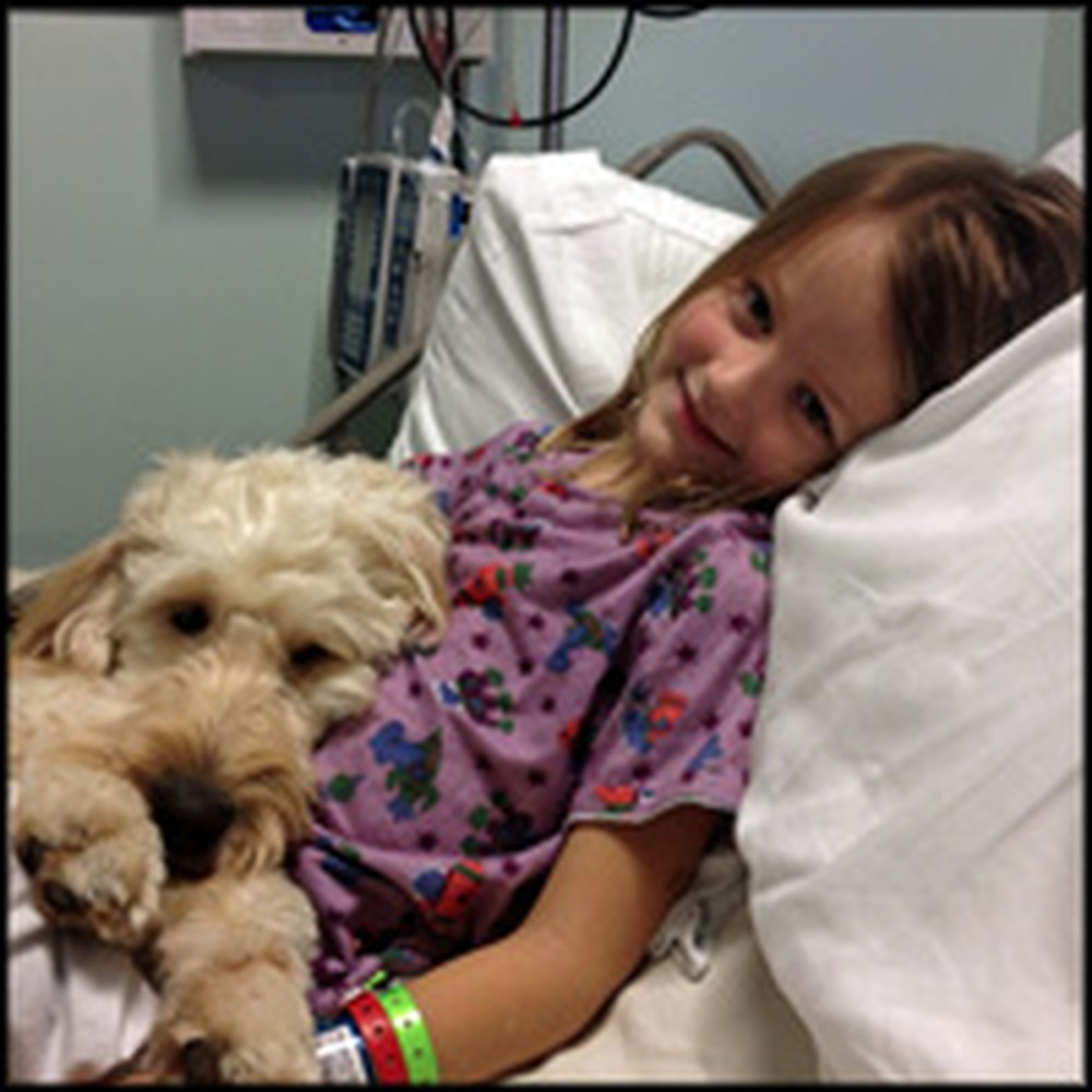 Heroic Dog Protects Girl From Deadly Allergy - an Adorable Dynamic Duo!