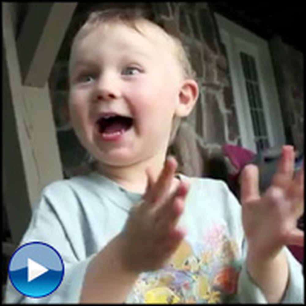 An Excited Little Boy Tells His Daddy About the Best Plan Ever