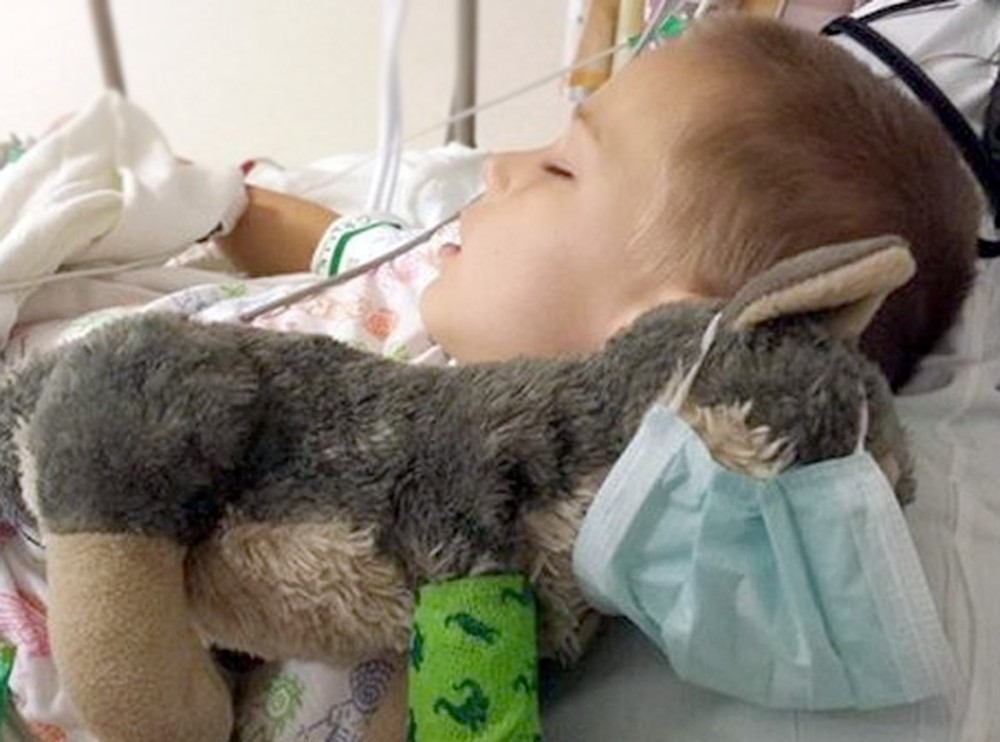 A Nervous Little Boy and His Stuffed Wolf Gets a Sweet Surprise During Surgery - So Touching :)