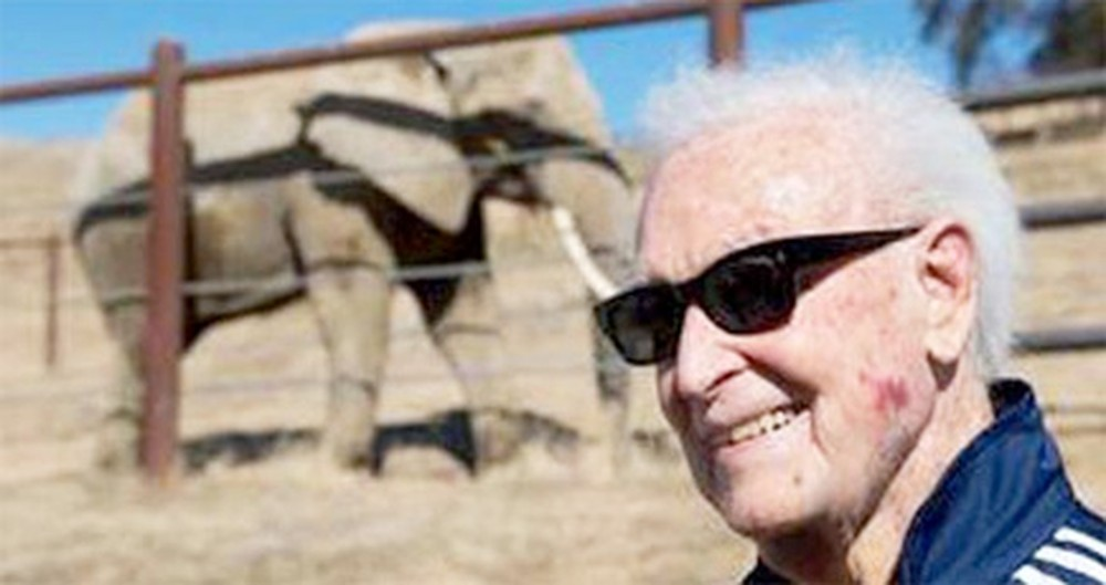 The Price Was Right for The Elephants Bob Barker Saved - 1 Million Dollars!