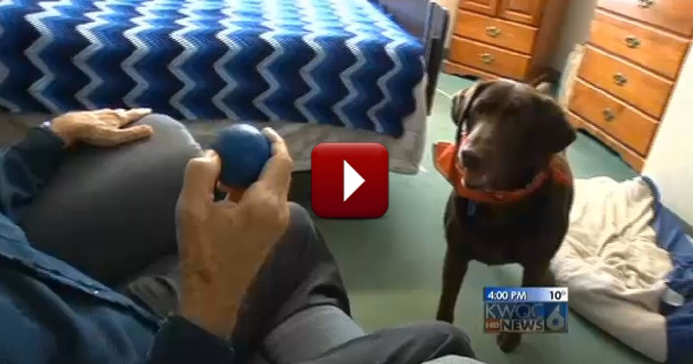 8-Year-Old Rescue Dog Becomes Loyal Companion to Nursing Home Residents