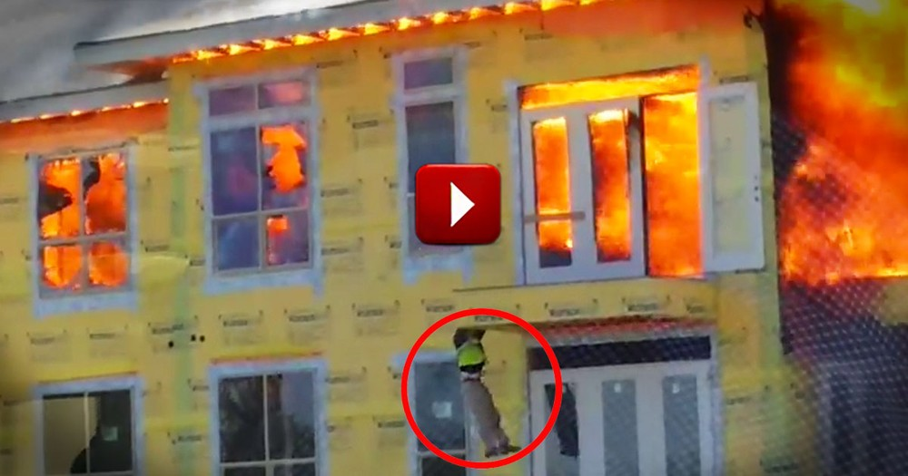 Witnesses Thank God After the Closest Rescue You'll Ever See
