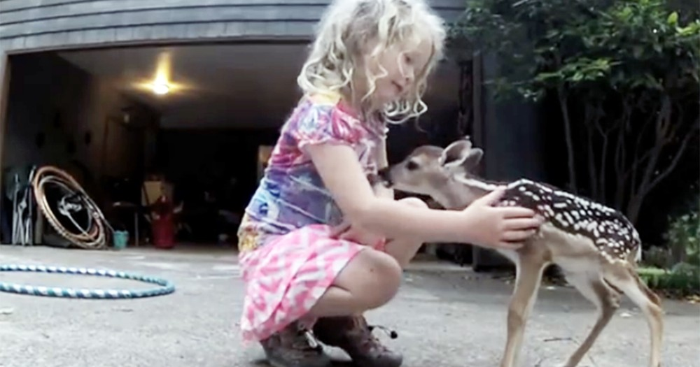 Adorable Little Girl is a Deer Whisperer and Bonds with Fawn