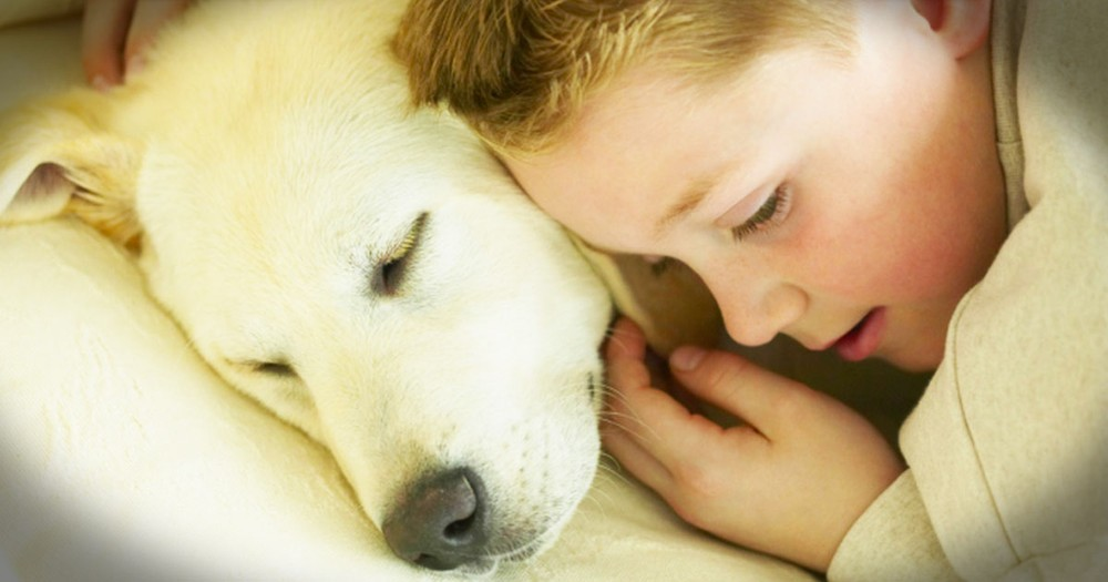 When His Best Friend Was Put Down, This 6-year-old Said Something That Amazed Everyone.