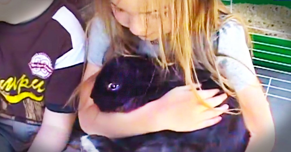 Someone STOLE A Pre-School's Bunny. And Now I Can't Stop Smiling At How He Was Returned!