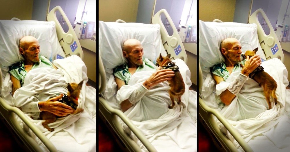 This Elderly Man Had 1 Last Wish. And This Sweet Reunion Left The Entire Room In TEARS!