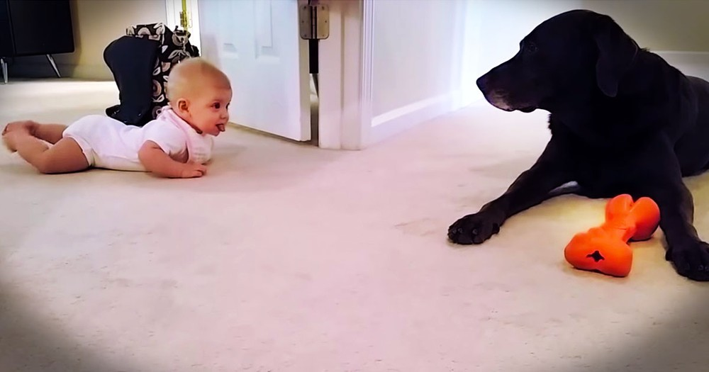 I Didn't Think Baby's First Crawl Could Get Any Cuter. Until The PRECIOUS Ending!