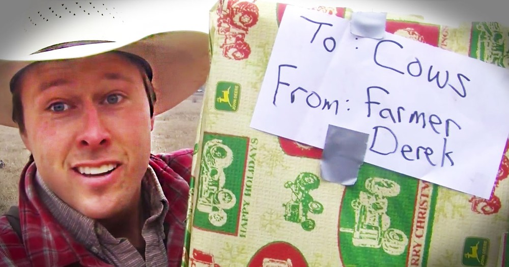 Farmer Calls His Cows With His Trombone For A Christmas Surprise