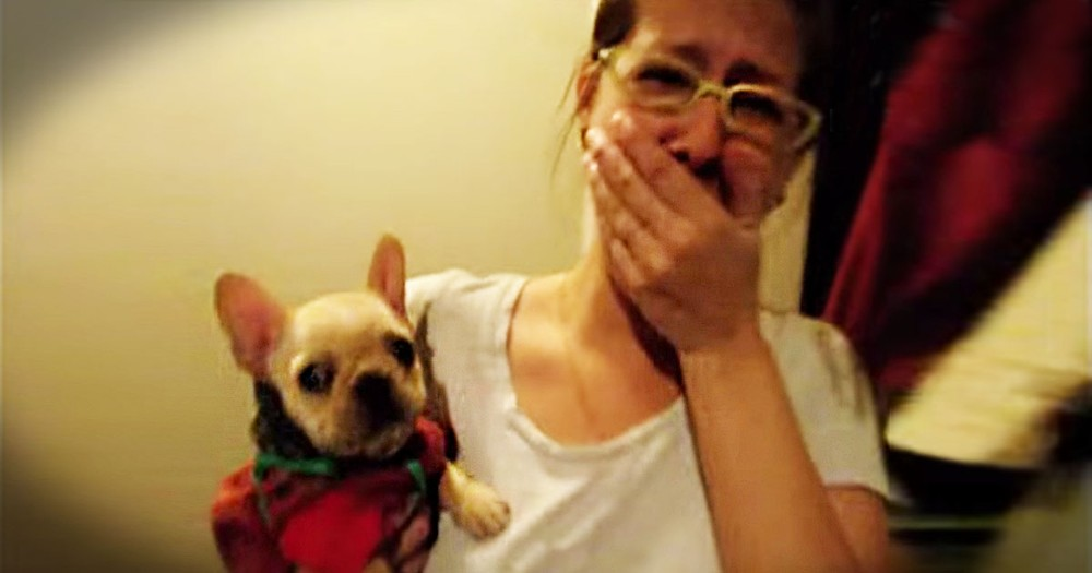 Pup Responds To 'I Love You'--Aww!