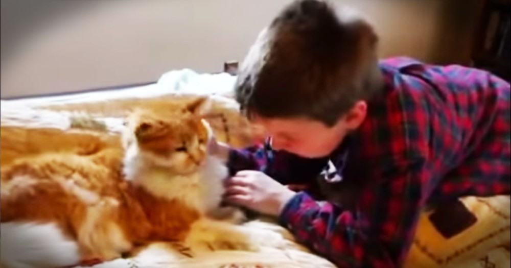 One Boy's Tearful Reunion With His Long Missing Cat