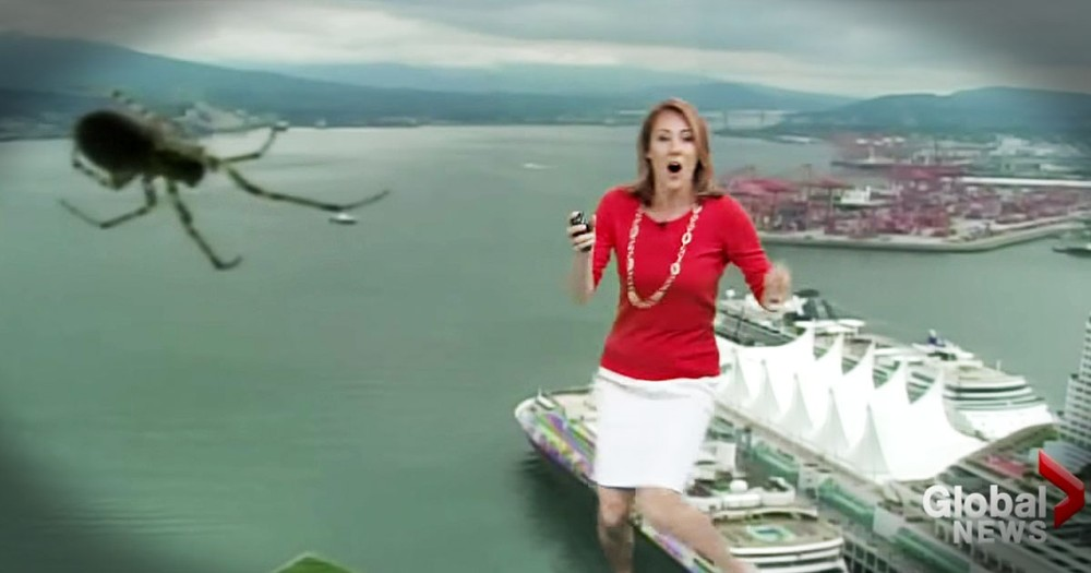 THIS Sent Her Running Right In The Middle Of Her Weather Report--EEK!