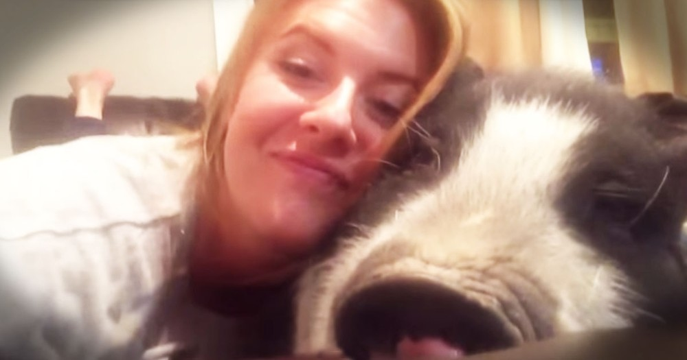 Apparently, This Piggy Isn't A Big Fan Of Snuggles--LOL!
