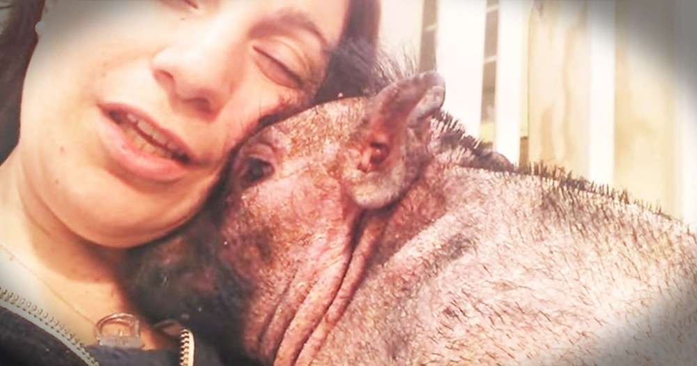 She Sang 'Down In The Valley' To Her Poor Rescue Pig, And My Tears Just ROLLED!