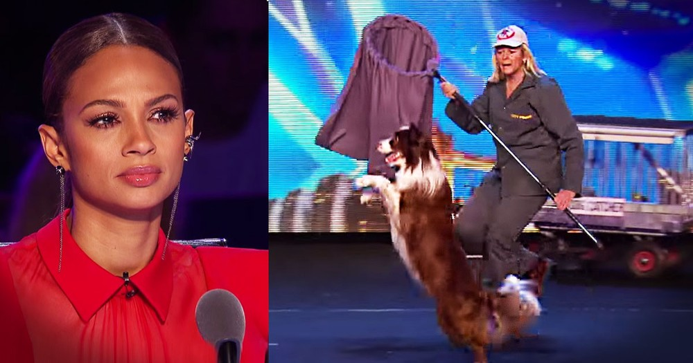 Simon Called This Pup The Smartest Dog EVER--Whoa!