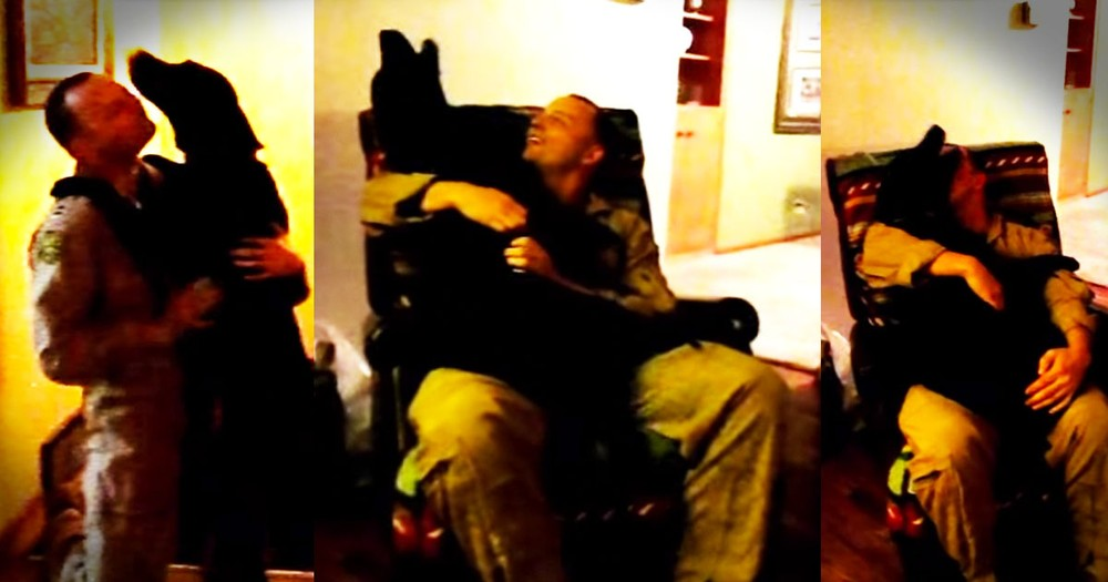 Sweet Dog Cries for Joy in His Soldier Daddy's Lap
