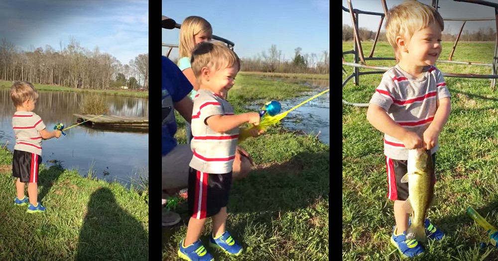 Little Boy Catching A Fish With His Toy Fishing Rod Will Make Your Day