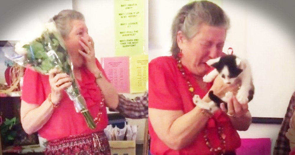 Teacher Grieving The Loss Of Her Cat Gets Adorable Kitten Surprise