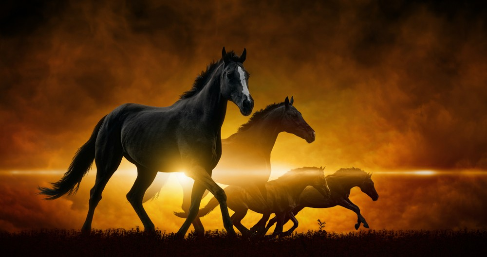 A Pastor Explains The 4 Horses Of The Apocalypse
