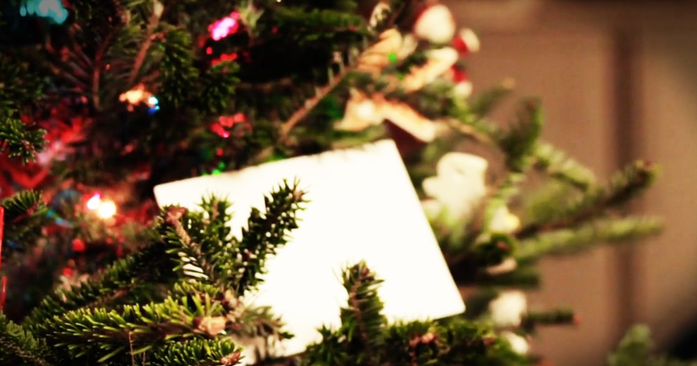 White Envelope On A Tree Changes The Heart Of A Man Who Hated Christmas