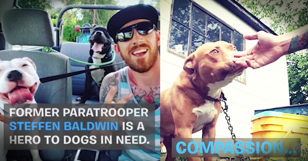 Veteran Dedicates His Life To Saving Misunderstood Dogs