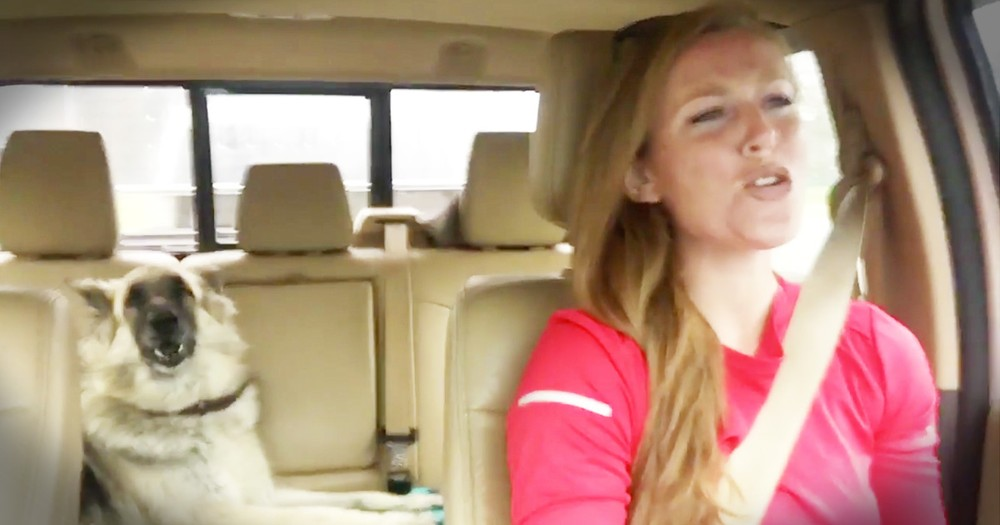 Dog Hilariously Takes Over Car Lip-Sync