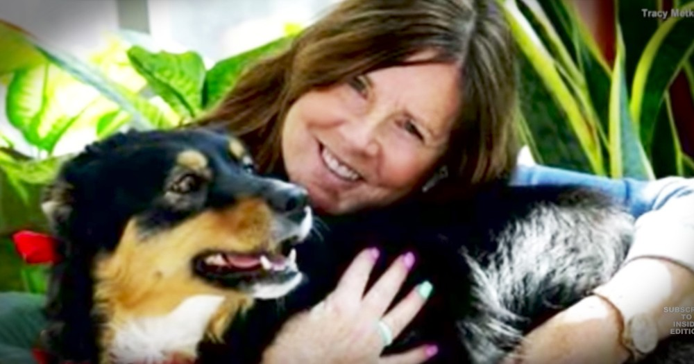 Woman Almost Dragged To Death Is Rescued By Her Dog