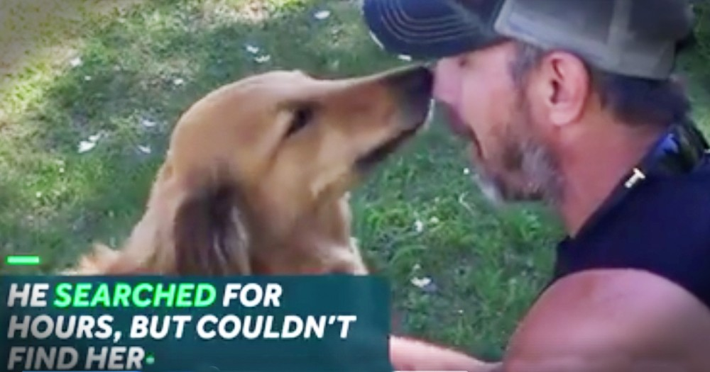 Man Reunited With The Dog He Feared Was Dead