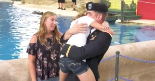 Military Dad Surprises Daughter During Dolphin Show