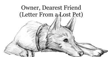Beautiful Poem From Pet Who Has Passed On