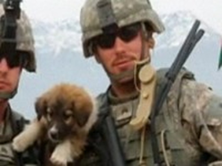 Soldier Reunites with Heroic Dogs from Afghanistan