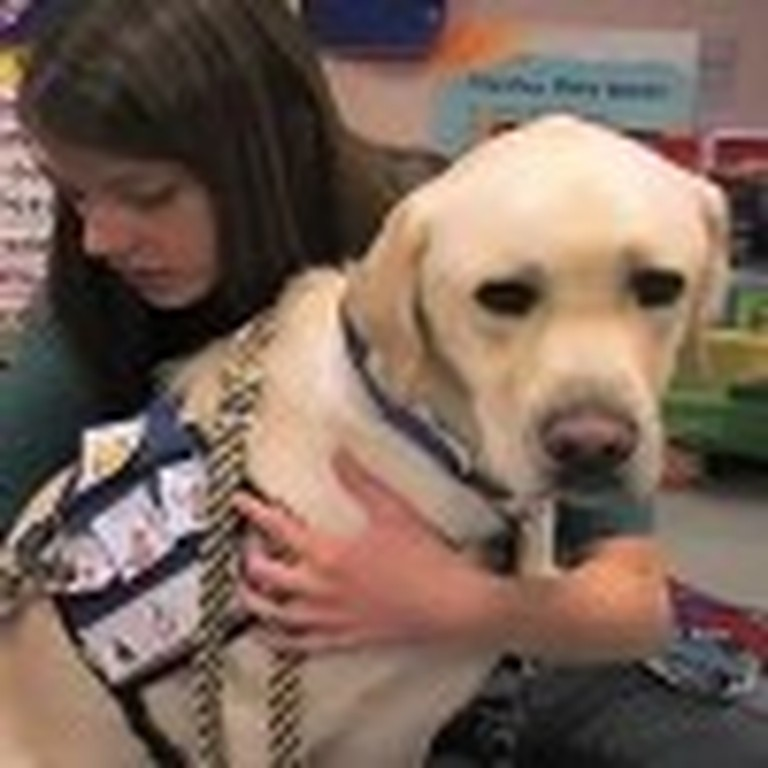 Incredible Service Dog Helps Kids With Autism
