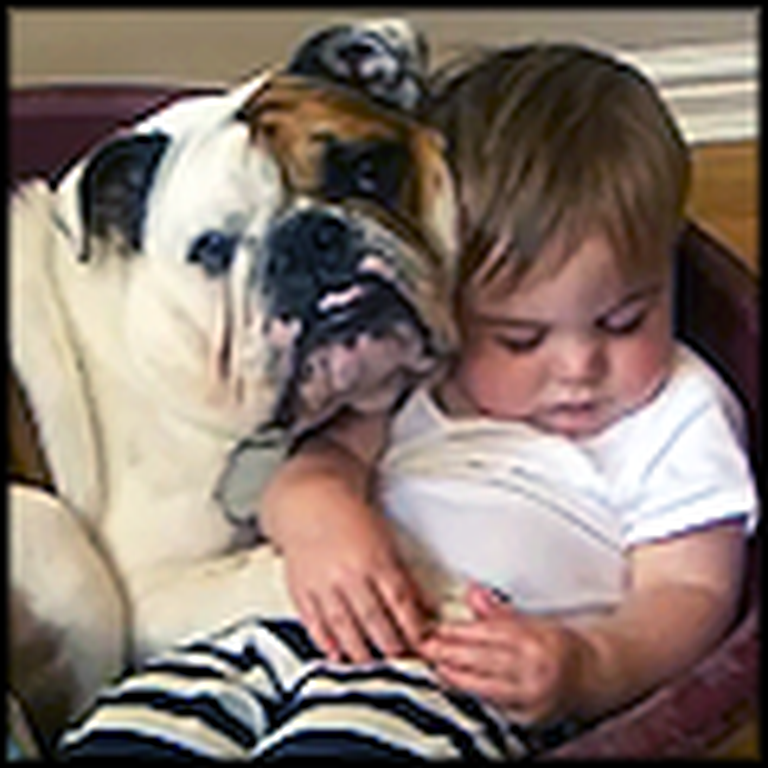 Bulldog Watches Over his Little Human Baby Brother