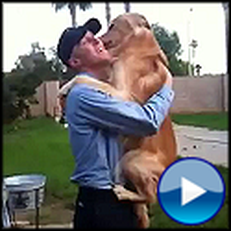 Two Dogs Give their Soldier Daddy a Huge Hug