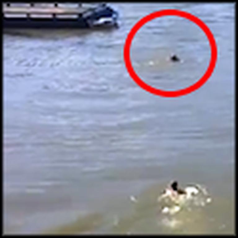 Good Samaritan Saves a Drowning Homeless Man