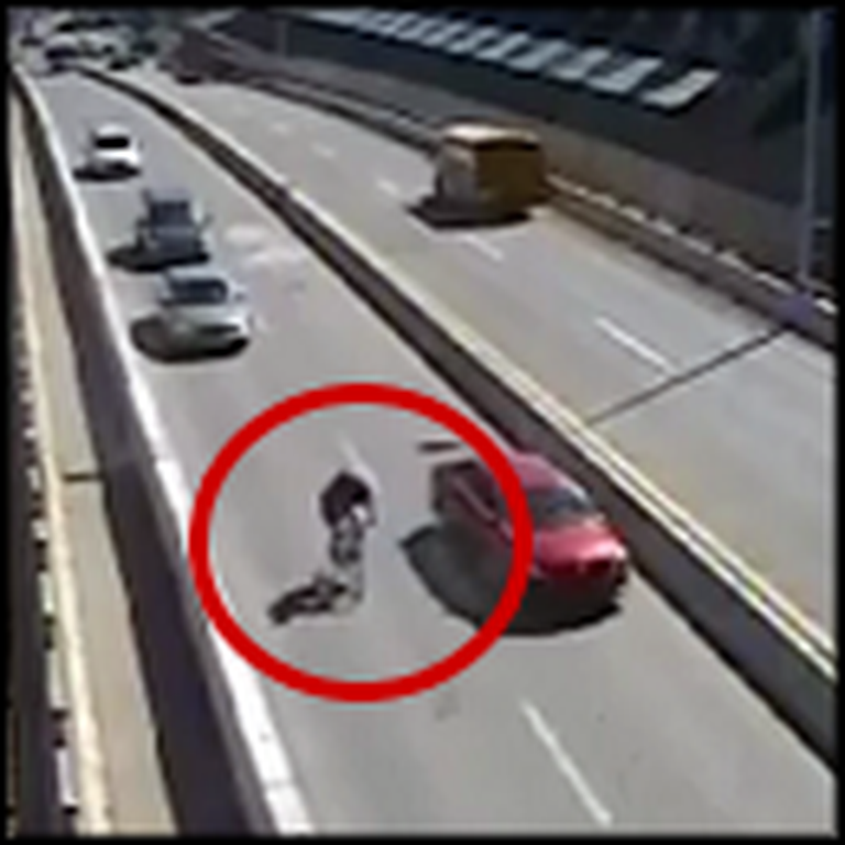 Good Samaritans Stop a Hit and Run Accident