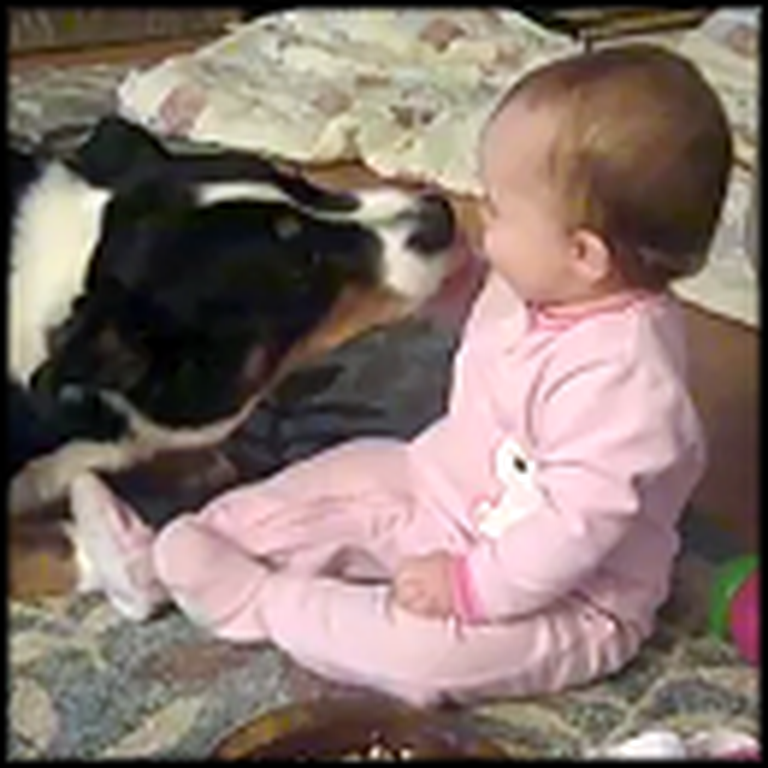 Happy Laughing Baby Shares Cheerios with a Doggy