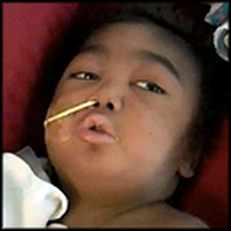Parents Show their Little Boy's Final Miracle Moments